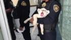 Rescatan a cachorro de león africano en Ciudad de México