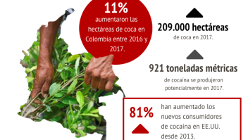 Coca Colombia cocaína consumo EEUU