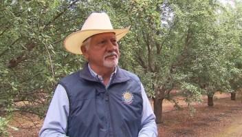 Agricultores en el limbo por el plan inmigratorio de Trump
