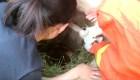 Rescatan a pequeña de un pozo en China