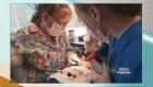 ¿Cómo cuidar la dentadura de los niños?