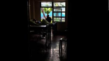 Plantas medicinales, ¿la solución a la escasez de medicamentos en Venezuela?