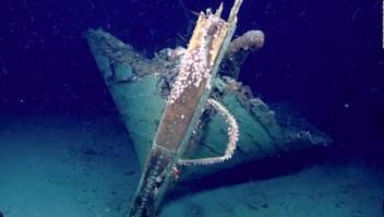 Encuentran un naufragio de mediados de 1800
