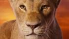 """Beyoncé y Glover cantan en """"The Lion King"""""""