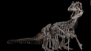Así luce el renovado Museo Nacional de Historia Natural