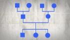 Cómo hacer un árbol genealógico médico