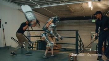 El video del abuso a un robot no es real