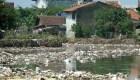 Azure: el salvavidas del ecosistema marino