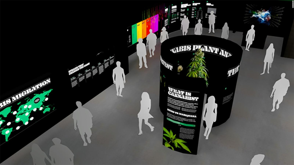 El Museo de la Marihuana llega a Hollywood