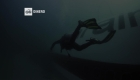 Explora el mayor parque subacuático del mundo