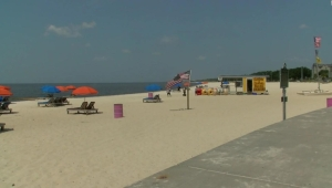 Algas tóxicas obligan a cerrar las playas en Mississippi