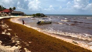 Toneladas de sargazo afectan el turismo en México