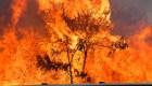Incendio quema más de 1.200 en Maui, Hawai