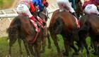 Nueva York: doce caballos de carreras mueren en julio