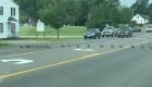 Esta fila interminable de patos detuvo el tráfico en Maine