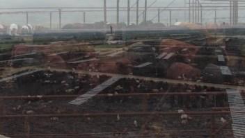 La producción de comida está destruyendo nuestro planeta