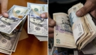 Caída del peso argentino, ¿funcionaría un esquema bimonetario?