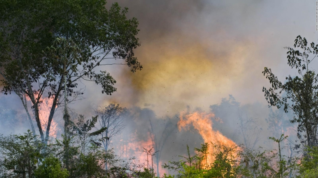 Las implicaciones de los incendios en la Amazonía