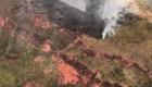 Llamas de la Amazonia rompen cifras récord