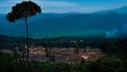 Los 5 países con mayor deforestación