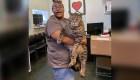 """Este gato """"gigante"""" ha encontrado un nuevo hogar"""
