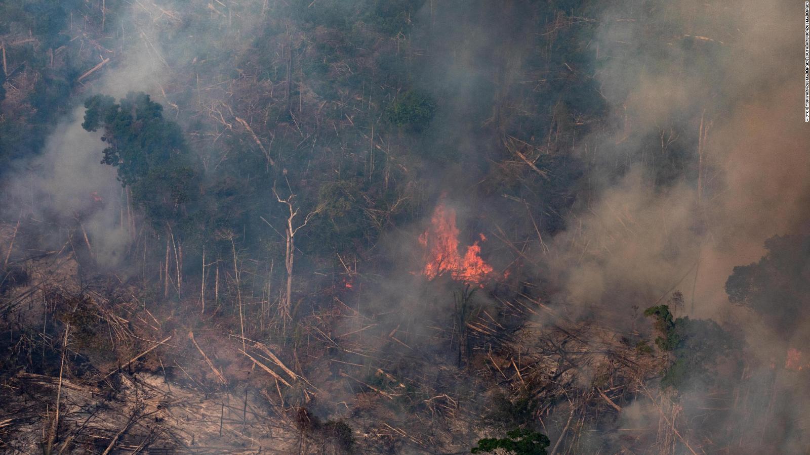 ¿Qué tres efectos tendrían los incendios en el Amazonas?