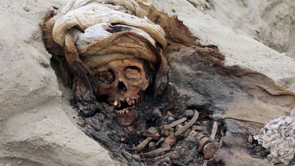 """Undated picture released by Andina Agency of the remains of one of 227 children allegedly offered in a sacrifice ritual by the pre-Columbian culture Chimu, uncovered by archaeologists in the Pampa La Cruz sector in Huanchaco, a coastal municipality of Trujillo, 700 km north of Lima. - A group of archeologists have discovered the remains of 227 children on Peru's north coast that were ritually sacrificed during the pre-Columbian Chimu culture, the biggest ever discovery of child sacrifice in the world. (Photo by LUIS PUELL / ANDINA / AFP) / RESTRICTED TO EDITORIAL USE - MANDATORY CREDIT """"AFP PHOTO / ANDINA / PROGRAMA ARQUEOLOGICO HUANCHACO / LUIS PUELL """" - NO MARKETING NO ADVERTISING CAMPAIGNS - DISTRIBUTED AS A SERVICE TO CLIENTSLUIS PUELL/AFP/Getty Images"""
