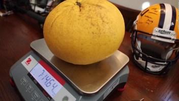 El tamaño de esta toronja rompe récord