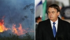 Viale: Bolsonaro es candidato a que se lo juzge por ecocidio
