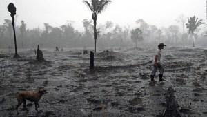 Incendios en el Amazonas: diferencia entre hechos y redes