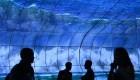 IFA 2019: Lo último en tecnología en la feria de más grande de Europa