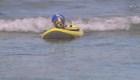Perros practican surf en California