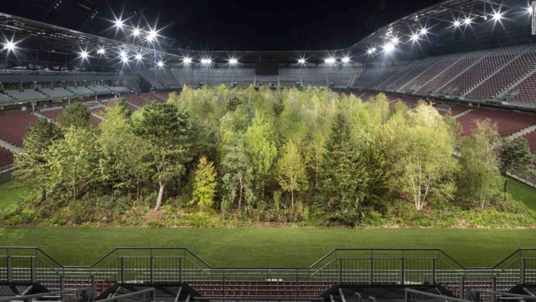 Estadio de fútbol se transforma en tupido bosque