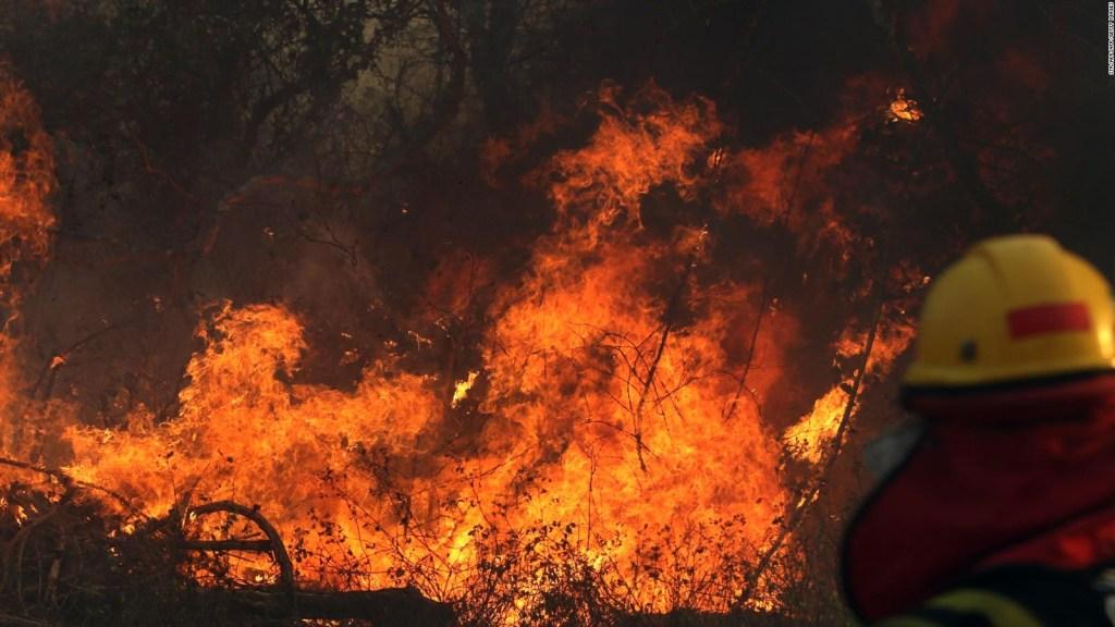 Fuegos en Bolivia: ¿Por qué el Gobierno no declara desastre nacional?