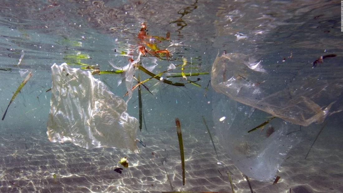 Expertos en alerta ante el avance de los residuos plásticos