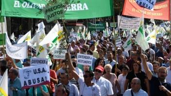 Productores de aceite de oliva protestan en Madrid pidiendo mejores precios
