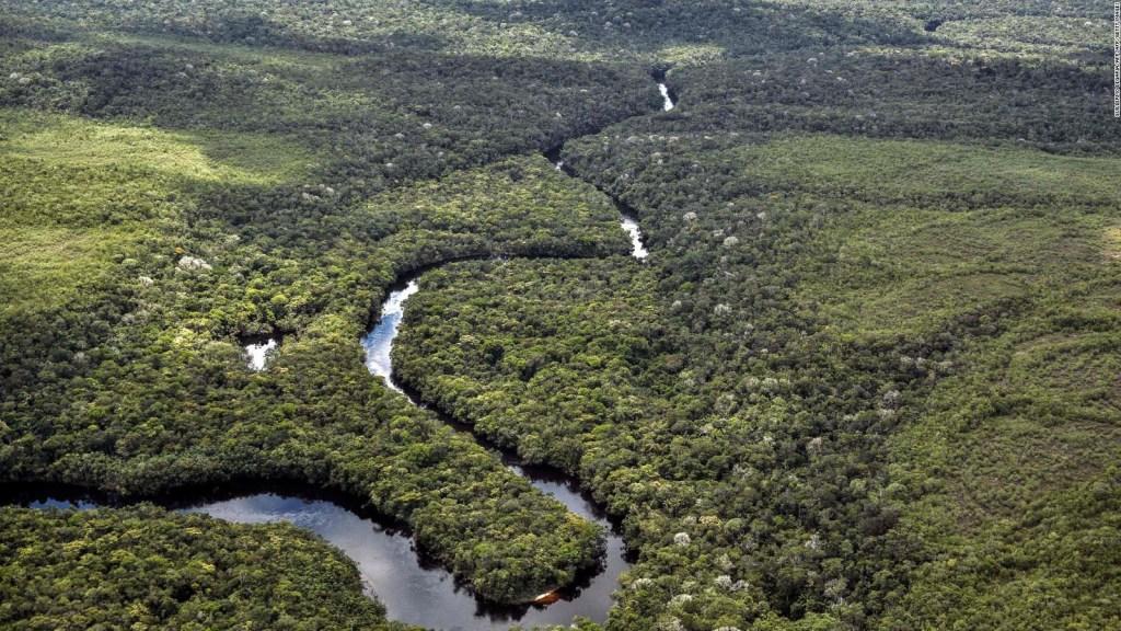 La NASA advierte: La Amazonía se está secando