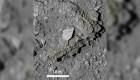 Nave espacial japonesa trae muestras extraterrestres