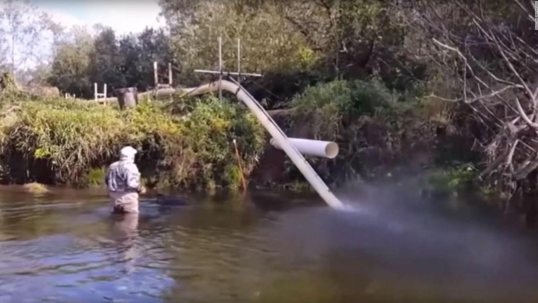 Descubre el Salmon Cannon, la máquina que ayuda a los salmones