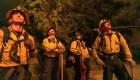 Los incendios en California, el Día de Muertos y más