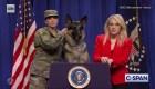 """El perro Conan ofrece """"conferencia"""" en SNL"""