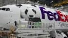 Bei Bei, el panda nacido en EE.UU., se muda a China