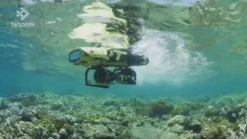 Australia: un robot ayuda a salvar los corales