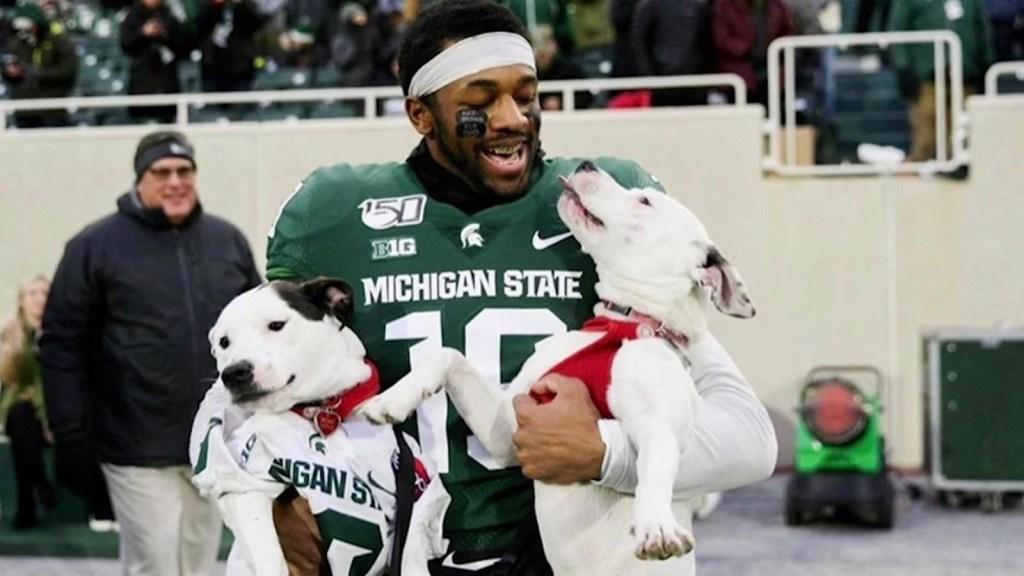 Invitó a sus perros a su último partido colegial