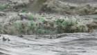 Marea plástica en Sudáfrica
