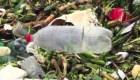 Hallan toneladas basura flotante en playa de Sudáfrica