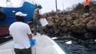 Se hunde una embarcación con diésel en las Islas Galápagos