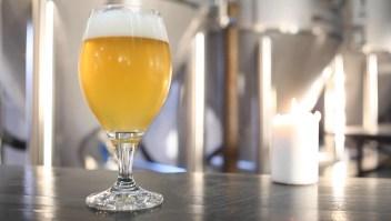 Guía básica para entender los estilos de cerveza