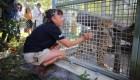 La función de los zoológicos, según Ron Magill