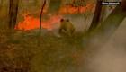 130 fuegos continúan activos en Australia